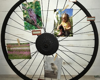 Painted Bicycle wheel for photo display • Bicycle wheel wall decor