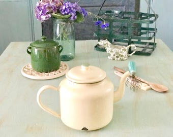 European Enamelware Teapot Cottage Chic Farmhouse Decor Large Beige Green Enamel Pot