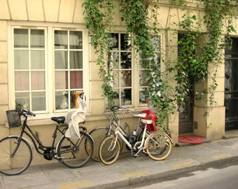 Paris Photography, Bicycle Photography, Bicycle and Door, Bicycle and Windows, French Photo Soft Beige, Window Photo, French Decor, Wall Art