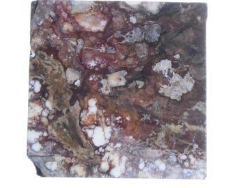 Wildhorse Magnesite Jasper Slab Orby Orbicular Cabbing #2008