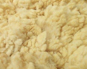 Claudia's 2.9 pound fine wool Corriedale fleece
