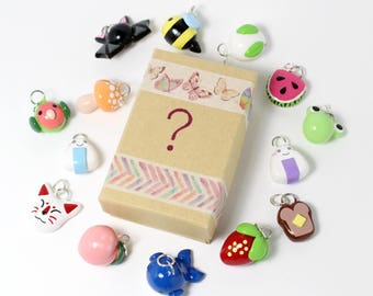 Mystery Charm Box! - Polymer Clay Charms - Mystery Box - Charm Grab Bag - Lucky Pack - Cell Phone Charms - Polymer Clay Jewelry