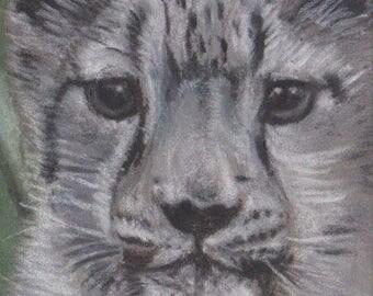 Original Snow Leopard Pastel Aceo Wildlife Painting Drawing Animal ATC Art Card