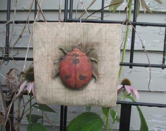 Lady Bug Tile