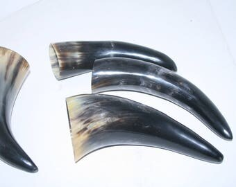 4 Cow horns ....  e4a81  ... Natural colored polished cow horns.,.....