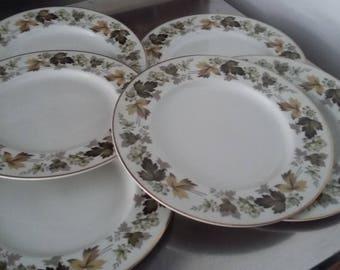 6 Royal Doulton Larchmont Dinner Plates Plate 270 mm