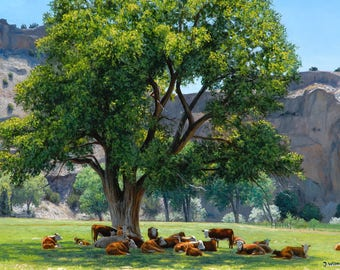 Cows 'Siesta' Art Print of Realist Oil Painting by Jurgen Wilms, 8x10 inches, Southwestern Cows Resting Under Tree
