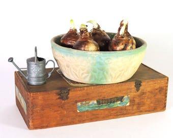 Robinson Ransbottom Bulb Bowl Daffodil Design Bulb Bowl Vintage 1931