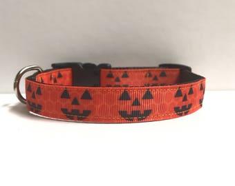 """5/8"""" Jack O Lantern collar"""