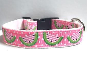 "1"" Watermelon collar"