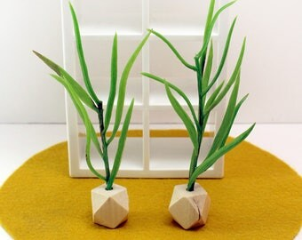 Two Tall House Plants - Miniature Modern decor, 1/12 or 1/6 scale