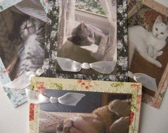 Kitty Vogue 4x5 Note Card Assortment of Four