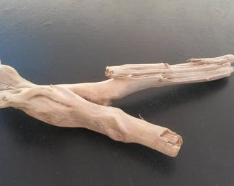 natural Driftwood branch