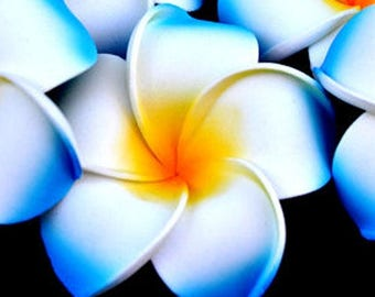 Artificial frangipani flowers in packs of 5