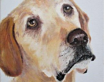 Labrador dog painting, Dog, Labrador dog art, puppy dog, dog portrait, Original, acrylic on canvas, Pet Portrait, Dog lovers, animal lovers