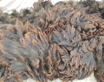 Drac's fleece