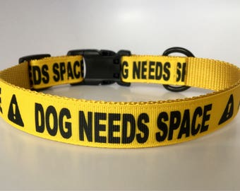 """Yellow """"Dog Needs Space"""" Caution - Collar or Leash - Ready to Ship!"""