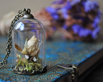 Buttercup * bronze blossoms vial terrarium necklace wild