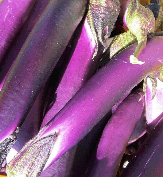 Malaysian Red Eggplant