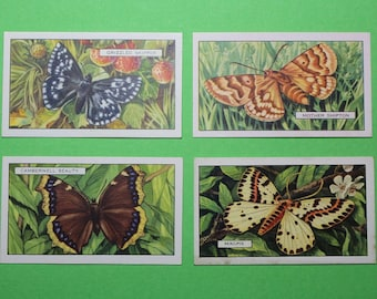 Vintage Cigarette Card Gallaher Ltd Butterflies and Moths 1938  Bright Clear Colours 4/48 For Sale Excellent Condition Collage Craft Item