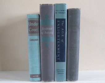 Decorative Books, Vintage Book Bundle, Farmhouse Books, Modern Vintage, Green Decor, Rustic Stack of Books, Green Books, Gray Books