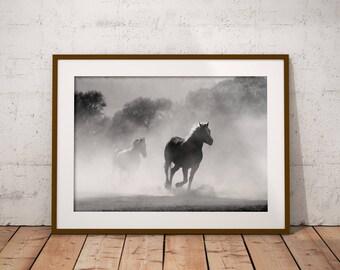 Horse Lovers Gift, Gift For Horse Lover, Horse Lover Gift, Horse Photography, Horse Photo, Wild Horses, Horse Digital Print, Wild Horse