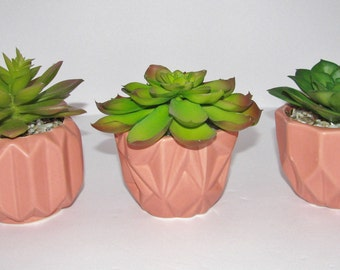 Succulent Planter in Pink Ceramic, Faux Succulent, Desk Accessory, Artificial Succulent Arrangement, Succulent Gift
