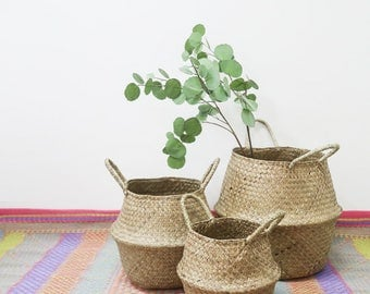 FALL SALE 20% / Seagrass Basket for Planter and Spray in 3 Sizes / Panier Boule Natural Belly Storage Organizer / Flower Branch Planter