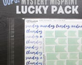 Mystery Misprint Lucky Pack - Planner and Bullet Journal Stickers Grab Bag