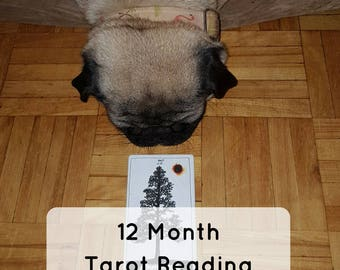 12 Month Tarot Psychic Intuitive Reading