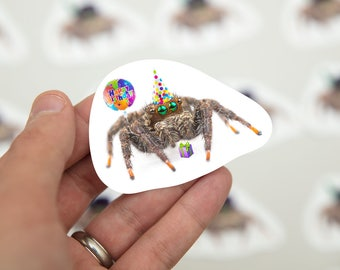 Spider Birthday Stickers, Spider Gifts, spider gag, spider accessories, stickers laptop, birthday gift, phidippus, random stickers