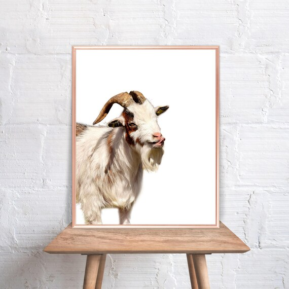 Superieur Goat Wall Art / Goat Home Decor / Goat Print / Goat / Goat Art / Goat Wall  Decor / Home Decor Goat #84