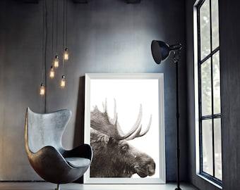 Moose Print, Moose Wall Art, Animal Prints, Animal Art, Monochrome Wall Decor, Home Decor, Large Prints, Black and White Art, Wall Art