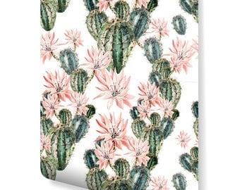 Desktop Wallpaper For My Succulents