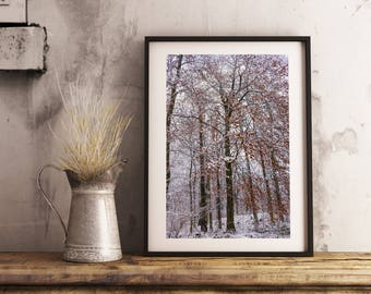 Snow Forest, Winter, Tree, Digital Download, Photography by JDOsnaps