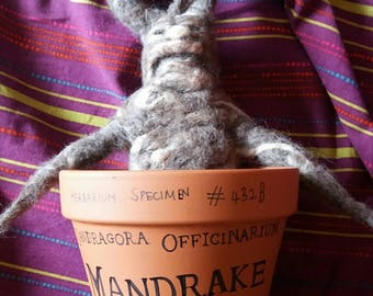 Custom made needle felted mandrake root in terra cotta pot