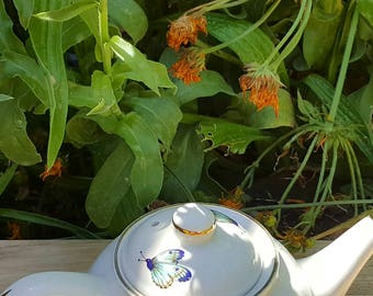 Pretty James Kent Old Foley Eastern Glory Teapot