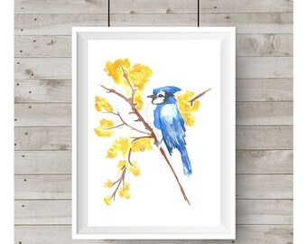 Bluejay Watercolor