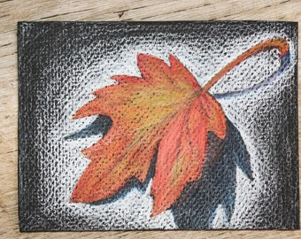 Autum leaf in color pencil on black paper