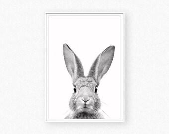 Rabbit print, nursery animal decor, bunny print, woodland animal, baby shower gift, nursery wall art, animal poster, nursery animal wall art