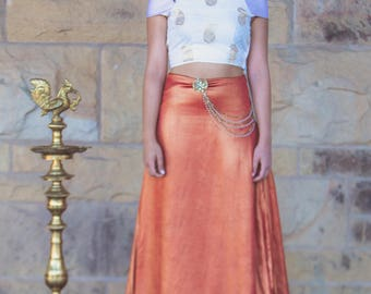 2 piece Indian-inspired set with crop blouse and long skirt