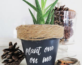 Plant one on me. Plant pun. Funny plant pot. Funny Plant pun potter. Succulent Planter. Indoor Planter. Funny Christmas gifts. Cactus Pot.