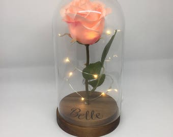 Small light up enchanted rose in a dome