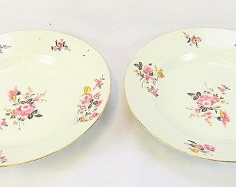 Vintage Limoges Set of two Plates with beautiful Flower Decor, Signed at the back
