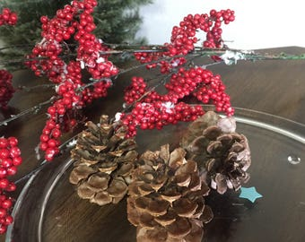 "Small Ponderosa Pinecones | For use in Wreaths or Wedding Decor or Rustic Decor and Crafts | 2""-3"" 