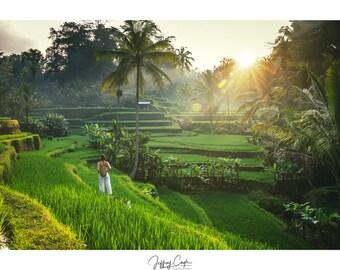 Bali Travel Photography - Green Landscape Print, Nature Wall Art, Ubud Sunrise Photo, Indonesia Rice Terrace, Asia Home Decor, Jungle Art