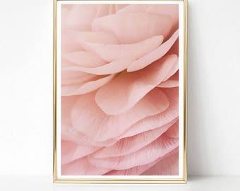 Botanical Print, Blush Pink Wall Art Print, Download, Girls Room Wall Art, Large Poster, Printable Art, Blush Pink Art, Floral Wall Decor