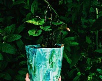 Leafy Green Indoor Paper Pot Plant
