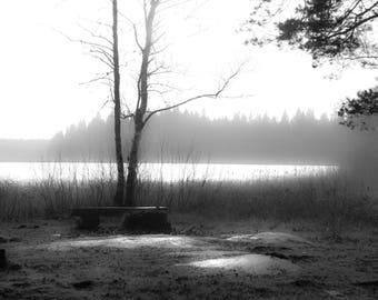 A foggy day at the lake