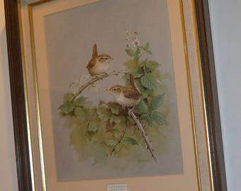 Painting - Two Wrens